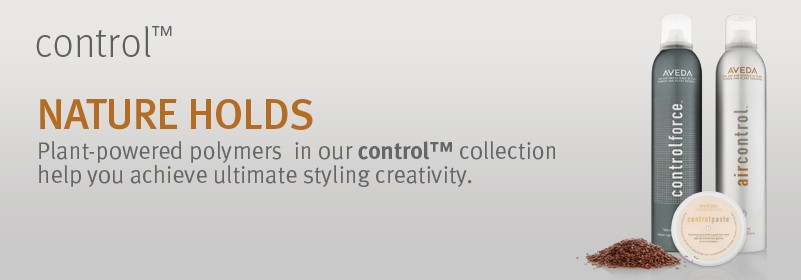 d_201203_collectionBanners_hairCare_r4-control
